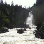 Fish Creek Falls Hike in Colorado
