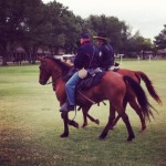 Cavalry horses Army Frontier Days 2012