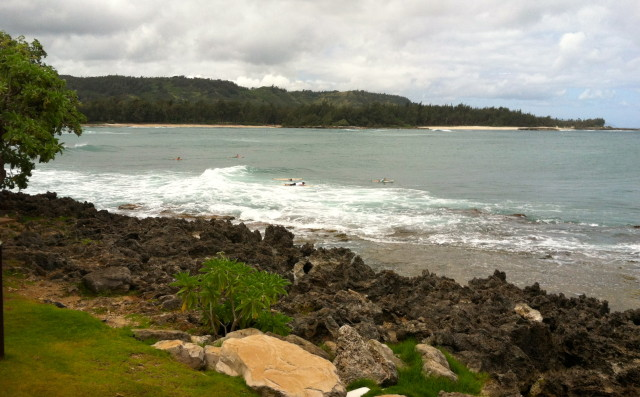 Turtle Bay North Shore surfers